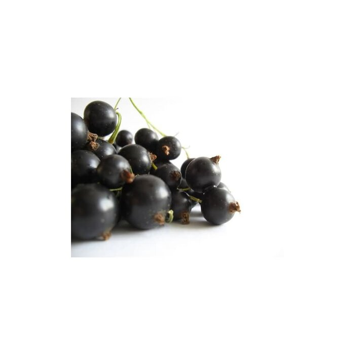 Decadent Vapours Aroma Blackcurrant 10 ml